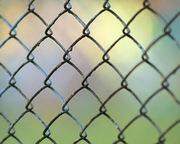 Сетка-рабица – обычная,  оцинкованная от производителя.